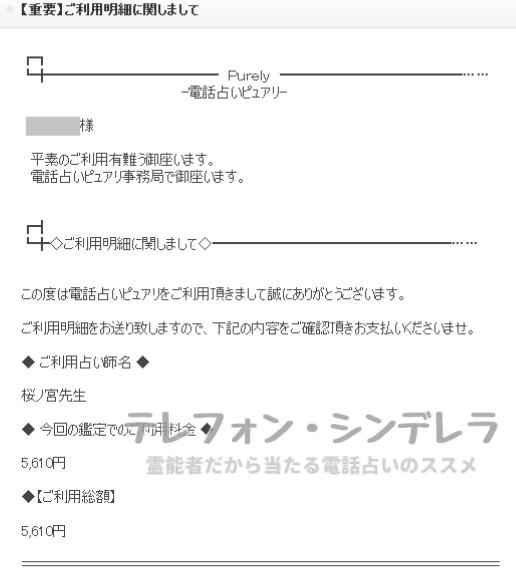 桜ノ宮先生の明細