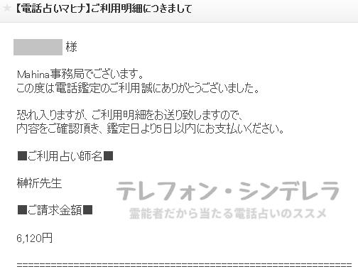 榊祈先生の明細