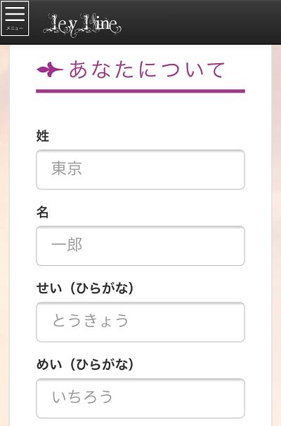 レイライン登録③